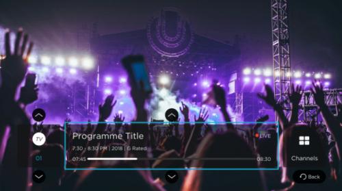 Live Player Option D